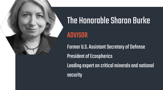 The Honorable Sharon Burke