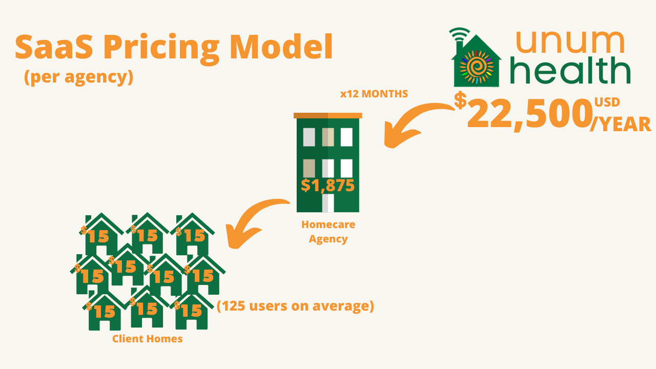 SaaS Pricing Model
