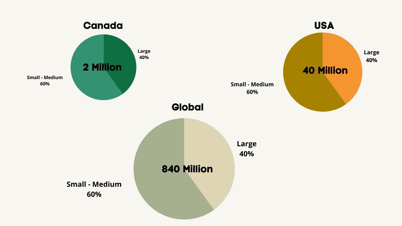 Home Care Market in the US, Canada & Globally